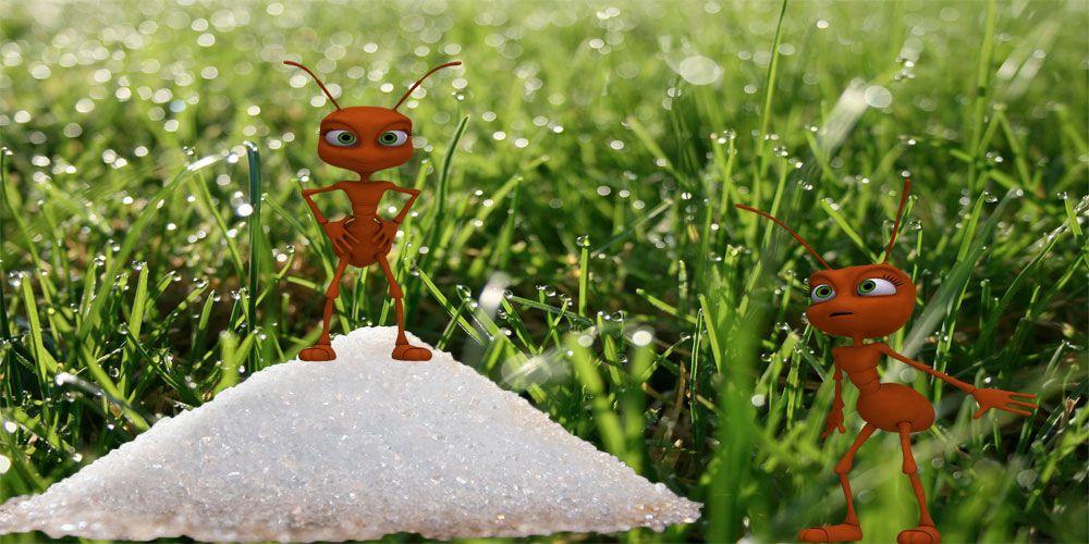 Fábula sobre el miedo a los cambios: Las dos hormigas