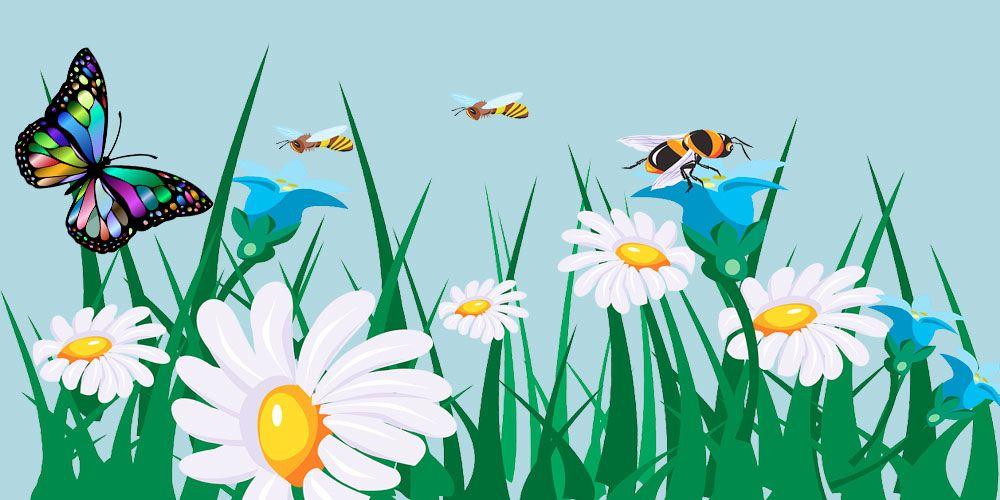 La Mariposa Y Las Abejas Fábula Sobre La Generosidad Para