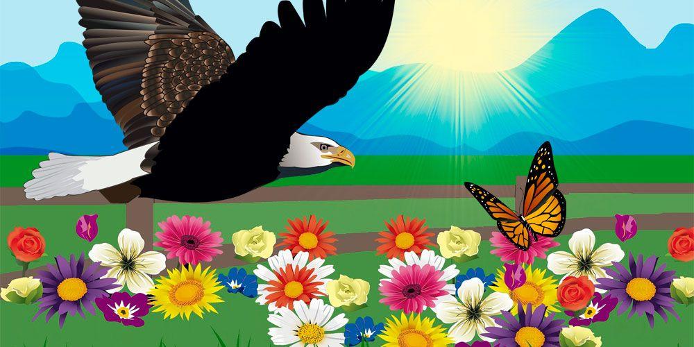 El águila y la mariposa: una fábula sobre la humildad para niños