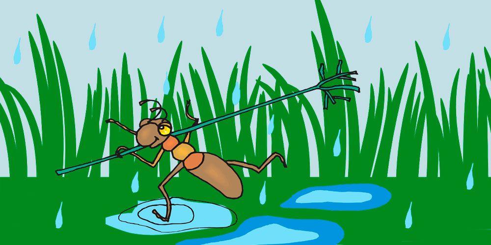 La hormiga, una fábula de Esopo para niños