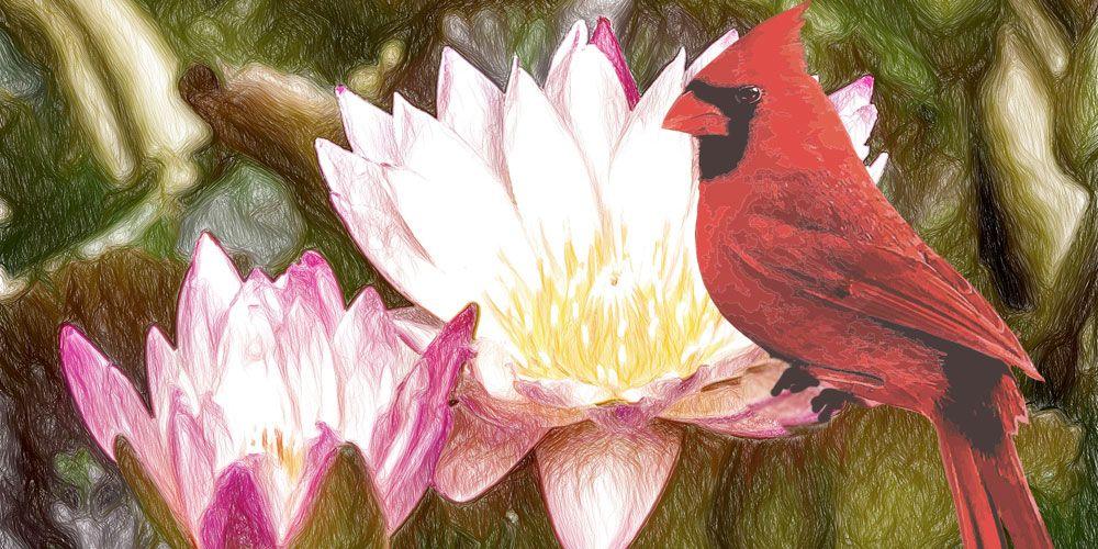 La leyenda de la Flor de loto, una leyenda maya para adolescentes y adultos