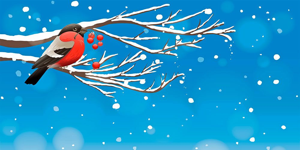 Canción del invierno, poesía para niños de Juan Ramón Jiménez