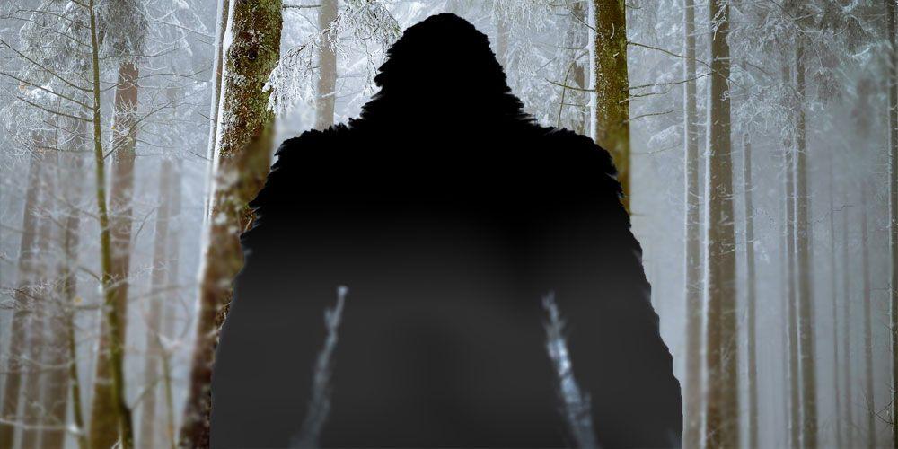Leyenda de Pie grande o Bigfoot