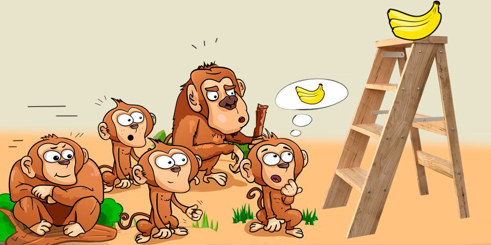Experimento de los monos y los plátanos explicado