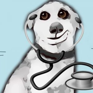 El doctor perro. Una leyenda china para niños y mayores