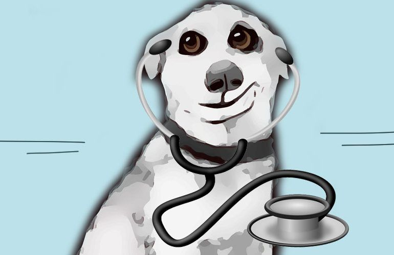 La leyenda china del extraño caso del Doctor perro