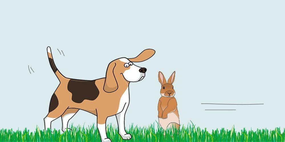 El perro y la liebre, una fábula corta de Esopo con valores