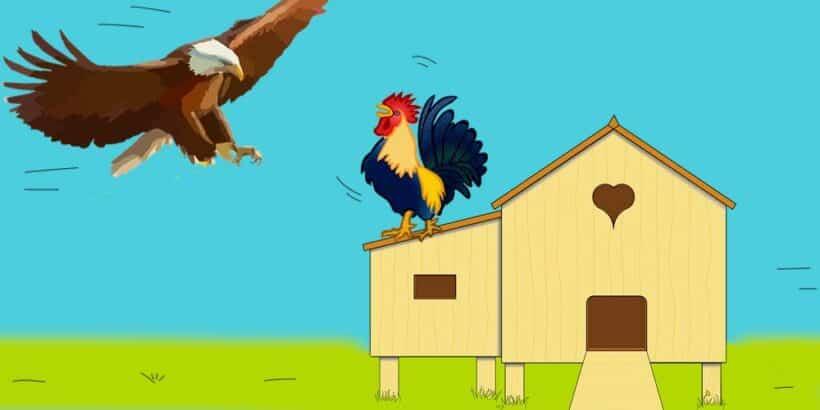 El águila y los gallos, fábula corta sobre la vanidad