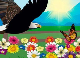 La mariposa y el águila: una fábula sobre la humildad para niños