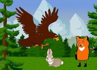 El águila y la zorra, una fábula de Esopo para niños
