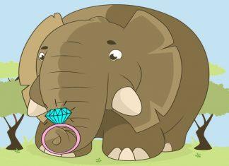Fábula sobre la ansiedad y los nervios: El elefante que perdió su anillo de boda