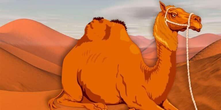 Cuento sobre la pereza: Cómo obtuvo el camello su joroba