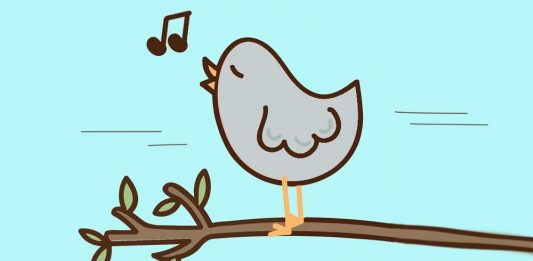 La leyenda del canto del cenzontle