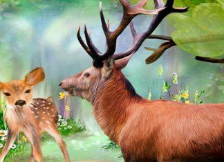 La fábula cprta El ciervo y el cervatillo, sobre el miedo