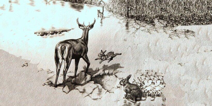 Un cuento infantil lleno de aventuras: El duro invierno