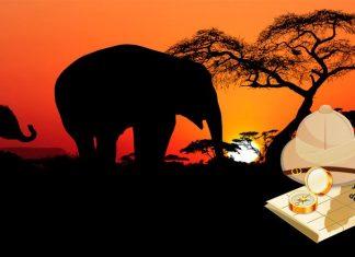 Cuentos y leyendas de África