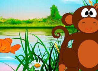 Una fábula para niños sobre la empatía: El mono y el pez