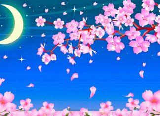 El viejo que hacía florecer los árboles, un cuento japonés con valores