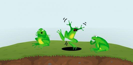 La importancia de creer en uno mismo: La rana sorda
