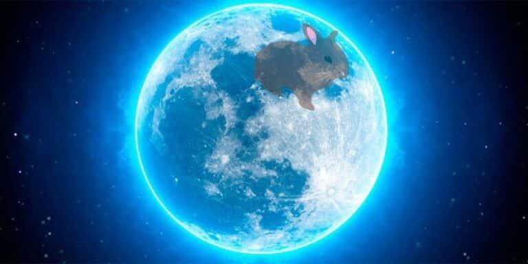 El conejo de la luna, una preciosa leyenda azteca