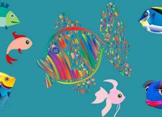 Mil peces, fábula para adultos sobre el perfeccionismo