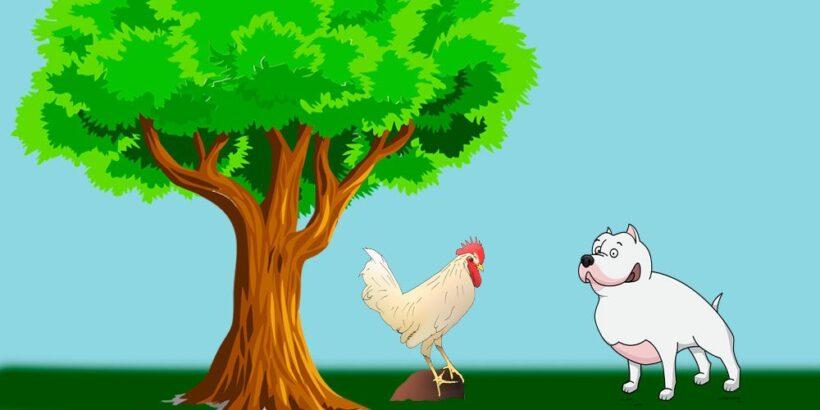 El perro, el gallo y la zorra, una fábula corta de Esopo para niños