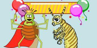 Una canción popular para niños: El piojoy la pulga