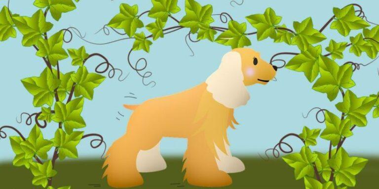 Trabalenguas con la r: La perra de Parra