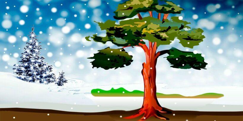 El último sueño del viejo roble, un cuento de Navidad