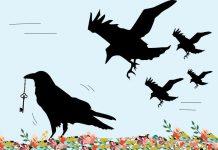 Los siete cuervos, un cuento de los Hermanos Grimm para niños