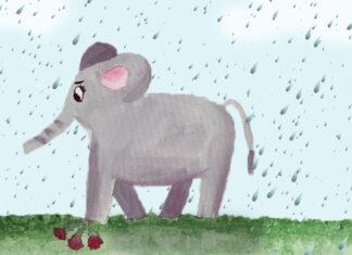 La leyenda africana de El elefante y la lluvia, sobre la solidaridad