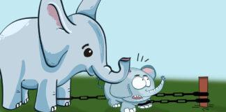Cuento El elefante encadenado, para adolescentes y adultos