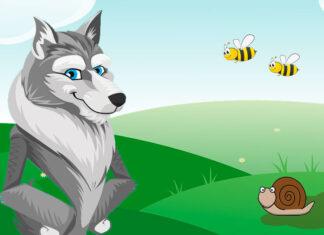 Un cuento tradicional francés para niños: El lobo, el caracol y las avispas