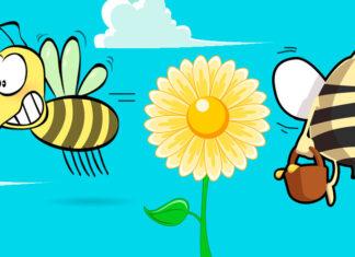 Cuento infantil sobre el esfuerzo: La abeja haragana