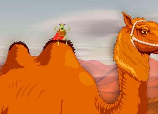 Fábula de Esopo sobre la vanidad: La pulga y el camello