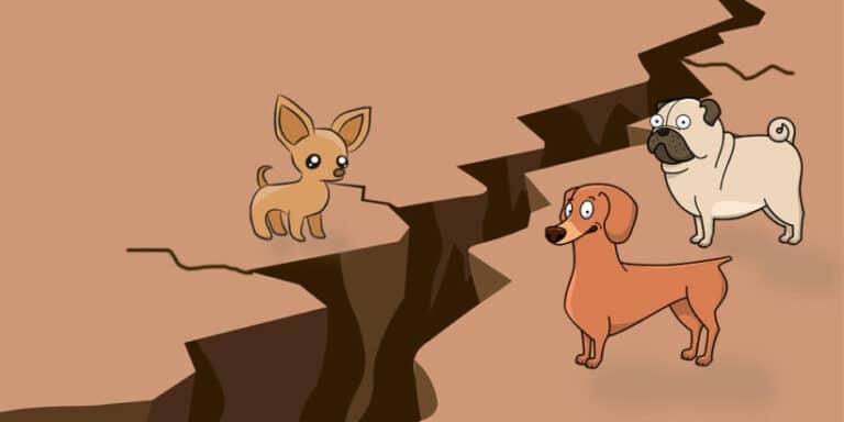 El cuento popular mexicano de Los perros y los temblores