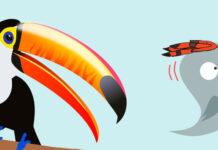 El pájaro carpintero y el tucán, una leyenda de Perú para niños
