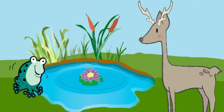 Cuento con valores para niños: Los sapos y el venado