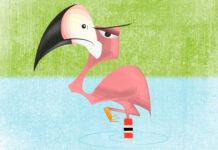 'Las medias de los flamencos', un cuento para niños sobre la envidia
