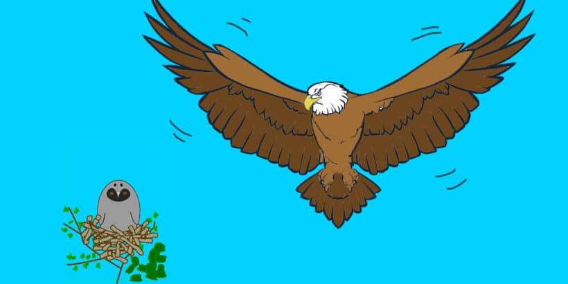 La fábula corta del águila y el búho, sobre la vanidad