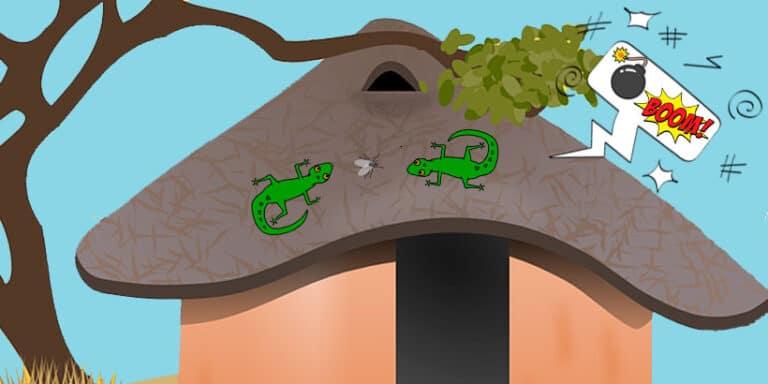 Cuento sobre las disputas: Una pelea de lagartos